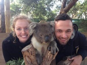 Lovin' some koala ear fluff in the eye at Moonlit Sanctuary